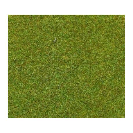 Tapis herbe